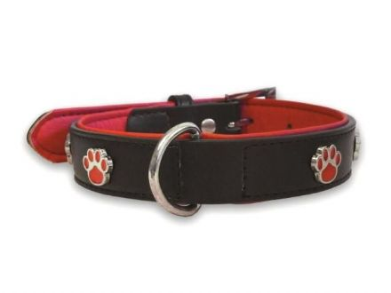 Paws Black Collar - Small